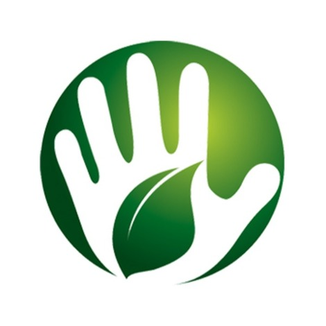 Palmeo Spa Home Service Massage