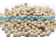 High Quality White Pepper