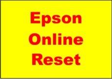 Epson Printer Resetting Service