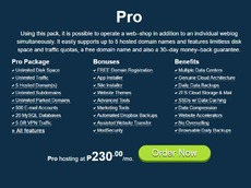 Pro Web Hosting