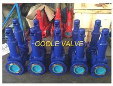 DIN Spring loaded Pressure Safety Valve