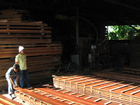 Sawn Timber AD/KD
