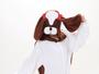 animal onesise Shih Tzu costumes